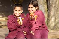 13 - ارتقاء سلامت دهان و دندان در دوران مدرسه